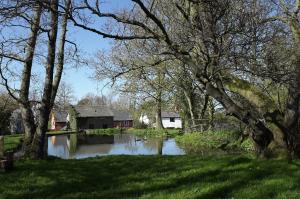 Bacheldre Mill
