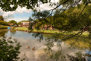 Calbourne Mill 1
