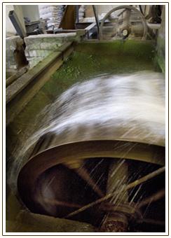 Cann Waterwheel